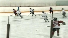 Calgary minor hockey game (File photo)